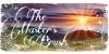 The-Masters-Brush